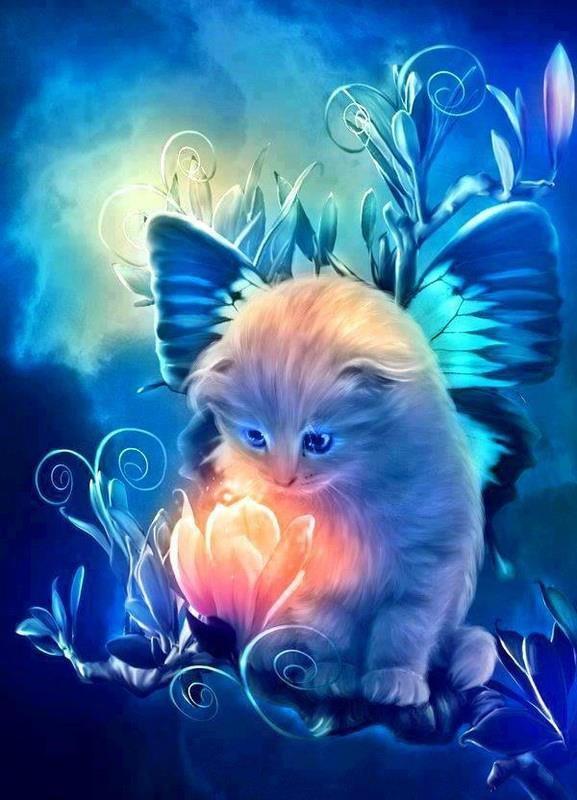 papillion chat Bonjour à tous, sur ce blog, vous aurez toujours des nouvelles des adoptés du refuge du papillon depuis 2010.
